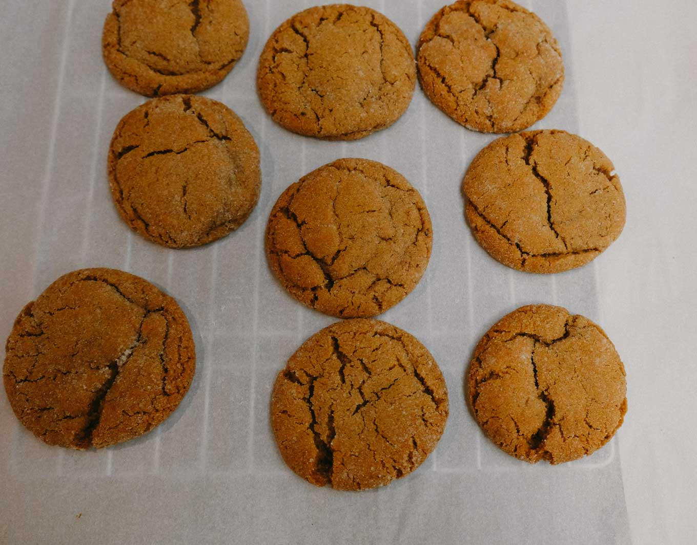 Molasses Cookies | The Tastiest Book